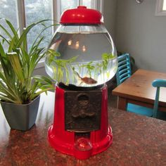 DIY: Gumball Machine Fish Bowl