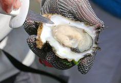 Sylt bietet einige kulinarische Genüsse, die sich mittlerweile auch nach hause liefern lassen.
