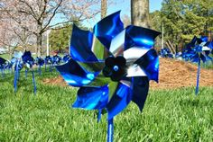 "A national campaign to prevent child abuse will make a stop in the WRAL Azalea Gardens Friday when employees are invited to plant ""Pinwheels for Prevention."""