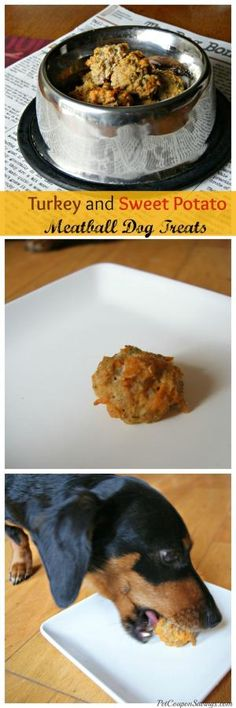 Homemade Turkey and Sweet Potato Meatball Dog Treats. Perfect for Thanksgiving! by shelley