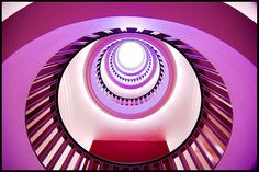 circles (purple dream)