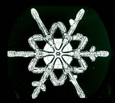 Snowflake study by Wilson Bentley (nd) (via Schwerdtfeger Library, Space Science and Engineering Center, University of Wisconsin-Madison)