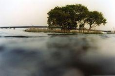 half awake and half asleep in the water by Asako Narahashi.