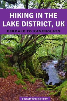 Eskdale Walk, Hiking to Ravenglass (+ Steam Train) Ireland Travel, Travel Uk, Travel Plan, Travel Ideas, Travel Tips, Lake District Walks, Pembrokeshire Coast, Hiking Training, Hiking Europe