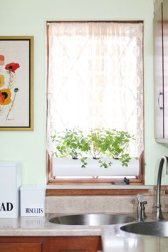 DIY floating PVC planter for growing herbs in your window