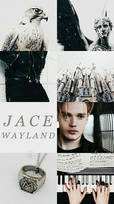 Shared by Find images and videos about shadowhunters, jace wayland and dominic sherwood on We Heart It - the app to get lost in what you love. Clary Fray, Clary Et Jace, Alec And Jace, Shadowhunters Malec, Clace, Dominic Sherwood Shadowhunters, Jace Wayland, Mortal Instruments Books, Shadowhunters The Mortal Instruments