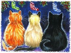 Kitties have Xmas stockings, by Anne Marsh? Cats