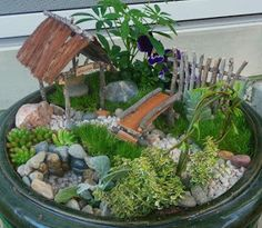 The variety of miniature plants in this miniature garden is really elaborate. An overgrown cemetery with wonderful bonsai trees. Beautiful miniature garden in a tree stump for a pod. A corner of the wild nature. Mini Fairy Garden, Fairy Garden Houses, Gnome Garden, Fairies Garden, Fairy Gardening, Indoor Gardening, Organic Gardening, Little Gardens, Small Gardens