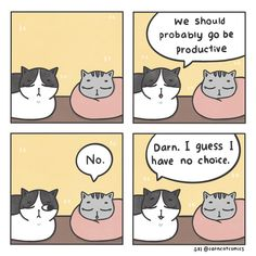 """Funny Comics For Your Weekend Perusal - Funny memes that """"GET IT"""" and want you to too. Get the latest funniest memes and keep up what is going on in the meme-o-sphere. Cat Comics, Funny Comics, Funny Animal Pictures, Funny Animals, Weekend Humor, Comic 8, Funny Quotes For Teens, Cat Sleeping, Grumpy Cat"""