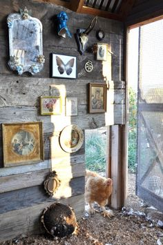 cabin / chicken coop decor! how cute.  She has even decorated the chicken coop...a girl after my own heart....    so cute my chicken coop is a mini log cabin,, complete with old screen door.