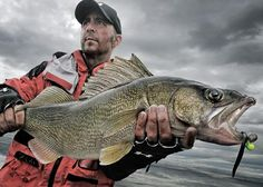 Fishing Tips: Where to Find Spring Walleyes