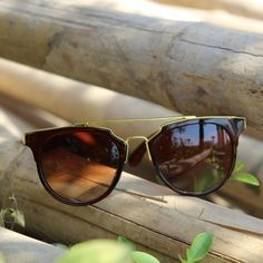 Oval Full Rim Brow Bar Matte Unisex Sunglasses