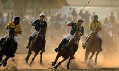 Polo-horses-in-action-001.jpg 460×276 pikseliä