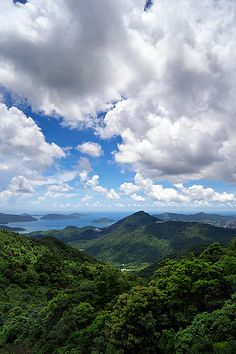 Fei Ngor Shan, Kowloon Peak, Hong Kong