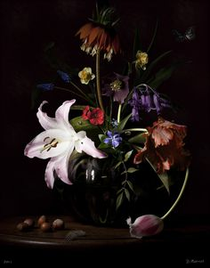 Bas Meeuws - contemporary Dutch flower still life photography