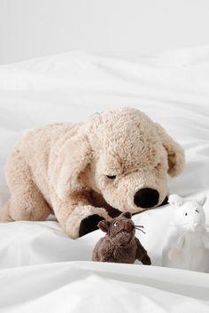 GOSIG GOLDEN - a friend who truly brings joy. Dogs Golden Retriever, Retriever Dog, Ikea Toys, Buddy Love, Cuddle Buddy, Coin, Softies, Dog Toys, Plushies