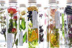 これまでにない植物の新しい楽しみ方 ~Herbarium course~ハーバリウムコース ・・・「ハーバリウム」とは植物標本のこと。特殊なハーバリウムオイルを使ってお花を保存しながらインテリアとして楽しみます。