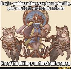 Norse Pagan, Norse Mythology, History Memes, History Facts, Stupid Funny Memes, Hilarious, Vikings, Goddess Of Love, Gods And Goddesses
