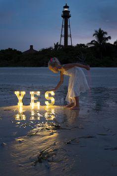 Wind Turbine, Wedding, Valentines Day Weddings, Weddings, Marriage, Chartreuse Wedding
