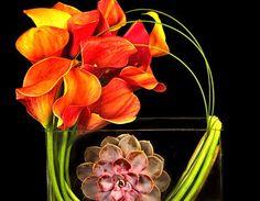 Flores lindas será sempre um assunto divino pra se falar e pra se ver, voces não acham?  Descobri este lugar em New York que faz arranjos super originais, assim como bouquets de noivas e festas de casamento.  Olhem só como podemos nos inspirar e fazer com nossas plantas tropicais coisas super pa