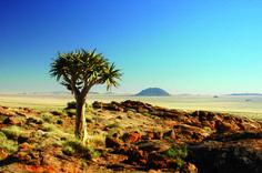 namibia | NAMIBIA HIGHLIGHTS l Lodgetour ab 1320 € | Afrika Safari Reisen ...