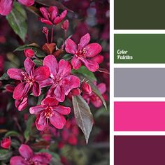 Color Palette #2959 | Color Palette Ideas | Bloglovin'