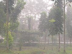 Rainy..