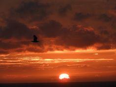 coucher de soleil au portel