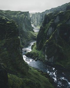 "natura-e: ""ttx-nature: ""By Max Muench "" - Nature blog ^^ """