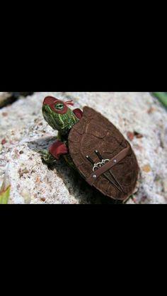 Mutant ninja turtle lol