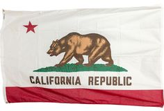 Deadstock California Flag for my room, it's happening California Republic, California Dreamin', My New Room, My Room, Flags Of The World, Home Textile, History, Places, Delta Chi