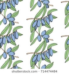 Vector seamless pattern with hand drawn honeysuckle twigs. Beautiful floral design elements, ink drawing