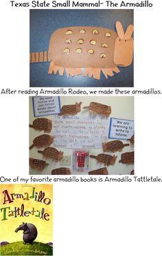 armadillo writing
