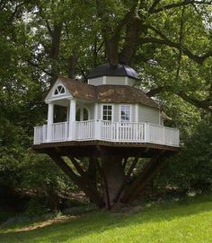 The nicest tree house ever!