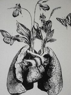 Human lung heart growing wild flowers and by utilitarianfranchise
