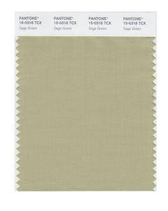 Pantone smart 14 1106x color swatch card peyote wall Sage green pantone