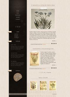 Notebook - wordpress theme