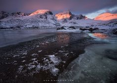 Cold Blossom by Erez Marom on 500px