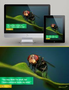 Free Wallpaper: I'm Small - for Mobile and Desktop via MacroPics.me