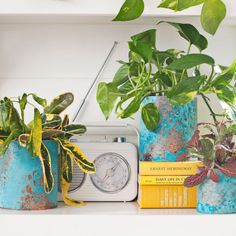 Turn old paint cans or tins into beautiful oxidized copper planters!