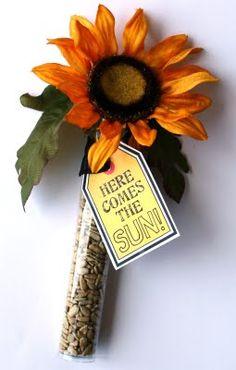 Koker gevuld met zonnebloempitten en kunst zonnebloem. Kaartje eraan vast 'hier komt de zon'.