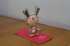 This is Yoga bunny. She loves yoga!