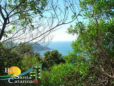 Morro das Aranhas - http://www.belasantacatarina.com.br/florianopolis/