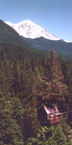 5 Truly Amazing Treehouse Hotels