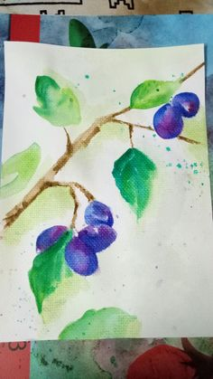 Blue Berrys on A4 size thick watercolor sheet.