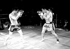 Muay Thai. Martial arts Gif