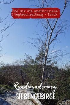 Schöne Tour rund um den Ölberg. Eine ideale Halbtagestour vor den Toren Kölns Wandern in NRW  NRW entdecken  Ausflugsziele NRW Outdoor, Beach, Nature, Hotels, Travel, Group, Bike Rides, Hiking Trails, Travel Report