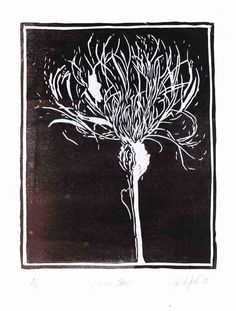 Flower Series - Original Lino Block Print -- marks and light/dark Linocut Prints, Art Prints, Block Prints, Lino Art, Linoleum Block Printing, Illustrator, Art Graphique, Wood Engraving, Tampons