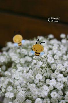 Dandelion, Plants, Dandelions, Planters, Plant, Planting