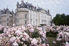 beautiful paris architecture france garden decor baroque rococo fairytale renaissance country house noreturn catsle p. buttons-and-ribbons Architecture France, Beautiful Architecture, Scorpius And Rose, Film Manga, Princess Aesthetic, The Villain, Fairy Tales, Beautiful Places, Beautiful Roses